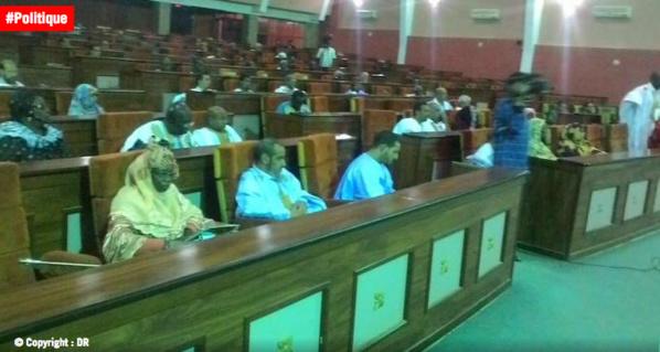 Mauritanie: réactions contrastées après l'adoption des réformes constitutionnelles par les députés