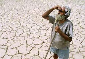 La Mauritanie célèbre la journée mondiale de la lutte contre la désertification