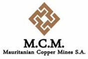 Mauritanie - Référendum : la société MCM, en campagne pour le « Oui »
