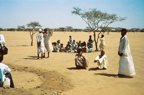 Mauritanie. Sécheresse: nouveau cri de détresse des éleveurs