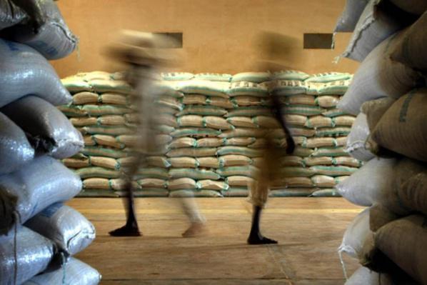 Mauritanie: 24 mille tonnes de riz local perdues pour la consommation