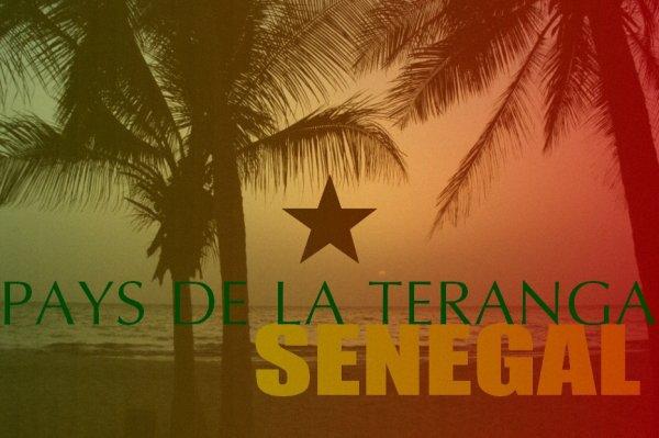 Selon une association italienne Mkheitir serait arrivé au Sénégal