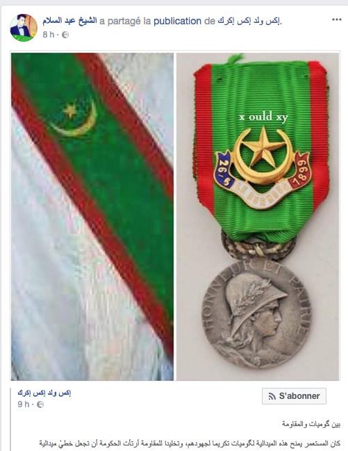 Tout ça pour ça : le nouveau drapeau de résistant est une copie d'une médaille de Spahis