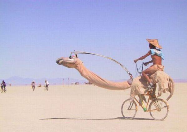 Election d'un nouveau bureau de la fédération mauritanienne du cyclisme