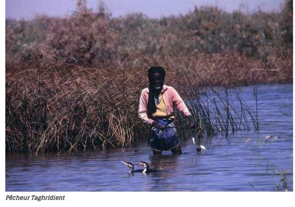 Les harratines de Keur Macène, une fierté en bandoulière entre une pauvreté endémique et des terres luxuriantes