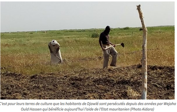 Djawlé, la face hideuse de l'esclavage d'Etat en Mauritanie