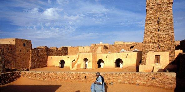 Mauritanie – Tourisme : voyage à la découverte des fleurs du désert
