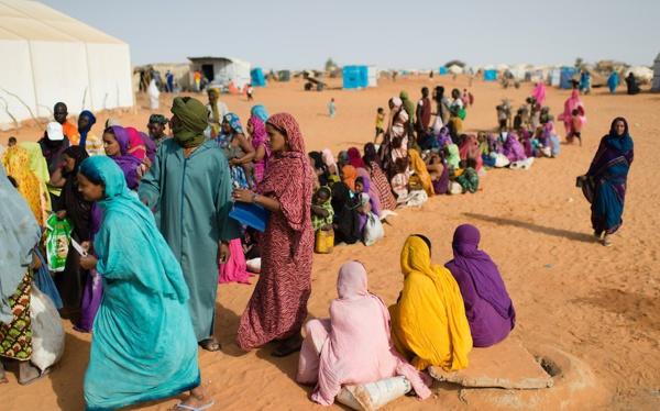 Mauritanie: 16'000 réfugiés maliens et populations résidentes du sud-est renforcent leurs moyens d'existence
