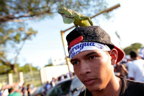 """Nicaragua: la CIDH dévoile son enquête sur l'usage """"excessif"""" de la force publique"""