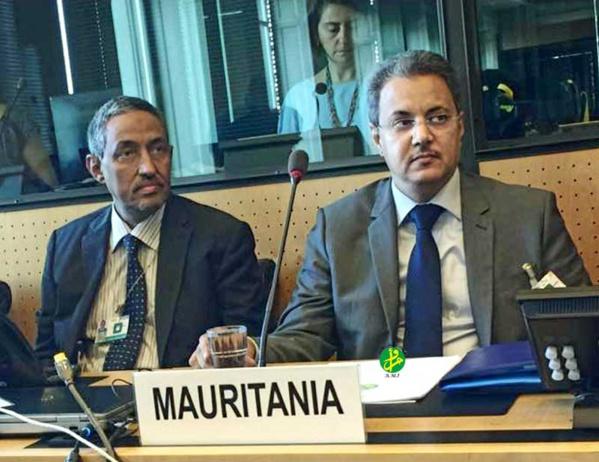 Genève : les réalisations accomplies par la Mauritanie en matière de droits de l'Homme