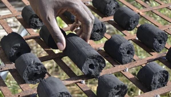 Sénégal-Mauritanie : Un projet qui fera du bien à l'environnement et l'économie