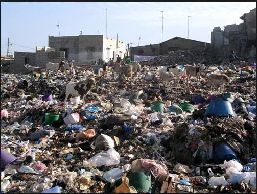 Brûler les ordures : Est-ce la solution pour s'en débarrasser ?