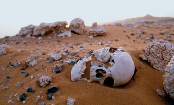 Mauritanie : des orpailleurs empêchés par l'armée d'acheminer de l'eau vers les sites de prospection