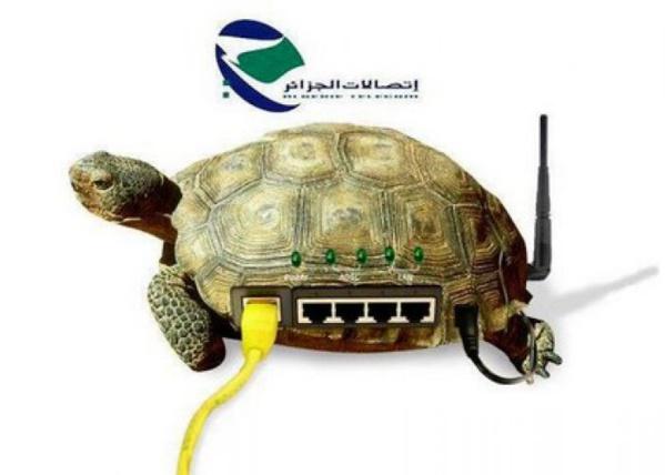 Mauritanie – Elections : l'Internet fixe partiellement rétabli