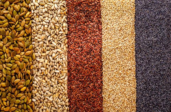 Expédition de semences traditionnelles dans les zones de production