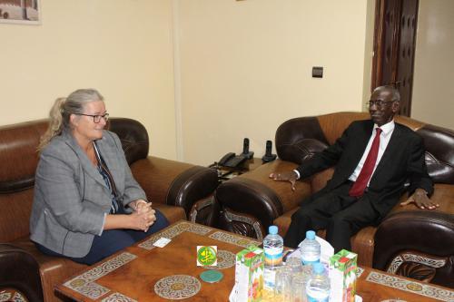 Le ministre de la Fonction publique s'entretient avec la chargée d'affaires de l'ambassade d'Allemagne