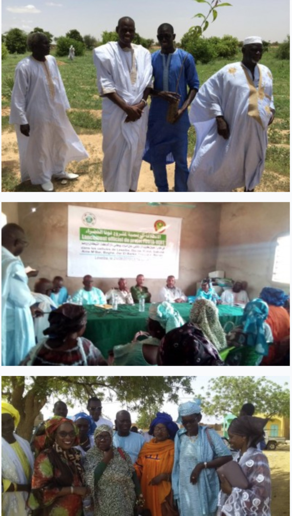 Environnement-Fouta Vert lance une campagne de plantation de 1632 arbres fruitiers