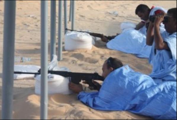 Les groupes armés n'ont aucune existence en Mauritanie et les munitions saisies étaient destinées aux clubs de tir à la cible (ministère de l'intérieur)