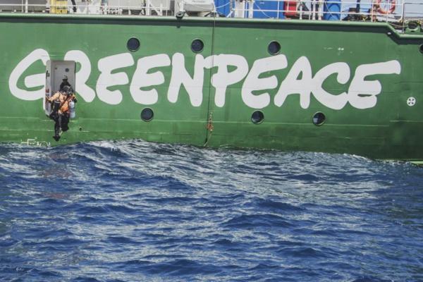A bord de l'Arctic Sunrise, à l'avant-garde du combat pour la défense des océans
