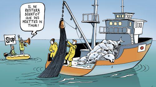 Mauritanie : arraisonnement d'un bateau russe dans une zone interdite à la pêche