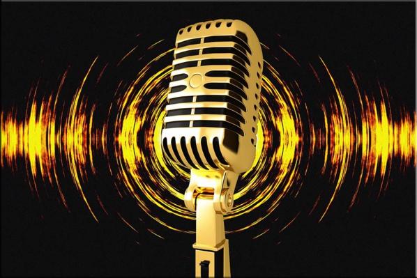 Signature d'un protocole d'entente entre les Radios égyptienne et mauritanienne
