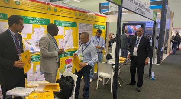 La Mauritanie vante ses ressources minières lors d'une conférence en Afrique du Sud