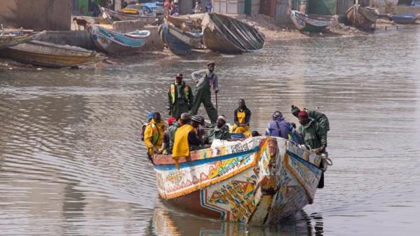 Saint- Louis : 400 licences remises aux pêcheurs de Guet - Ndar