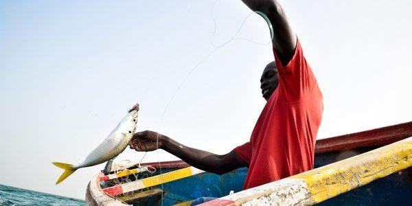 Sortie d'une promotion de cent pêcheurs artisans