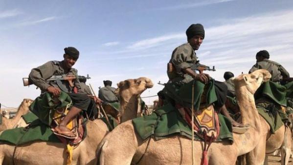 L'Armée inflige une cuisante leçon aux contrebandiers et saisit des véhicules et des mitrailleuses