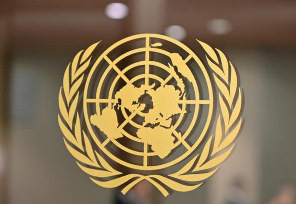 """Coronavirus: dans un monde replié, quelle place pour la """"coopération internationale""""?"""