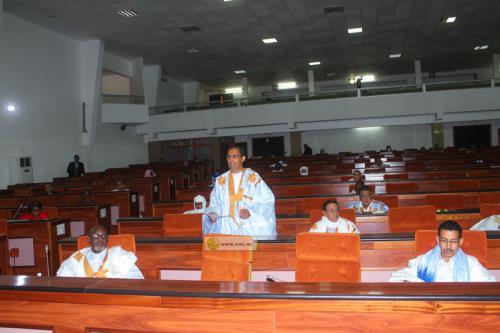 L'Assemblée nationale adopte la loi d'habilitation proposée par le gouvernement