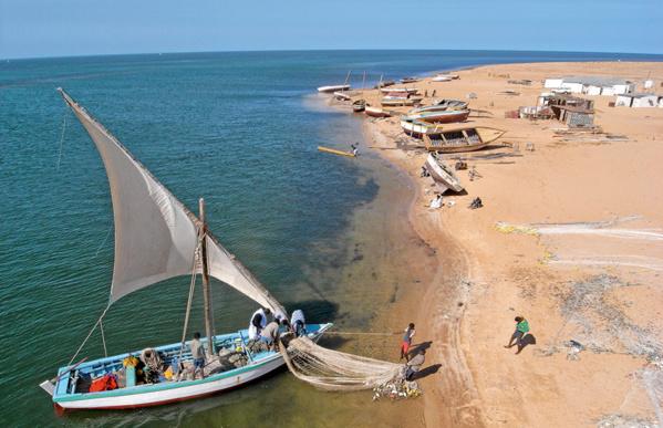 En l'absence de réaction : Les pêcheurs artisanaux en grève générale