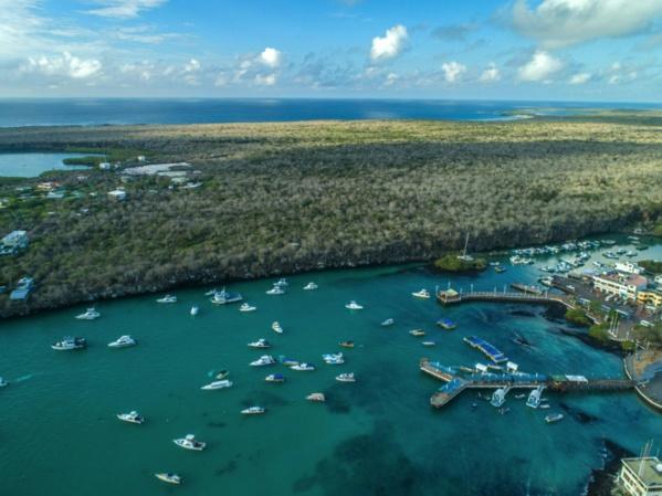 S'adapter pour survivre: science et tourisme sur les pas de Darwin aux Galapagos