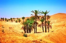 Point Afrique relance la Mauritanie le 19 décembre prochain