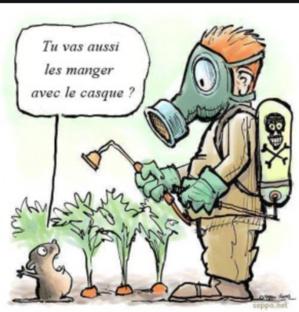 Rosso : Réception de 7800 tonnes de pesticides importés par le CSA