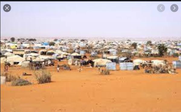 Bassiknou et les réfugiés de Mberra au cœur d'une réflexion sur les moyens d'existence, la paix et la résilience au Hodh Charghi