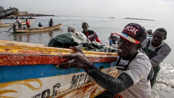Pêche sur l'axe Dakar-Nouakchott: Bonne nouvelle pour les pêcheurs sénégalais.