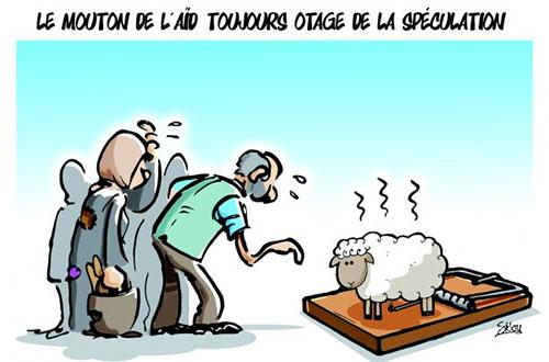 Santé et Société : L'AMVCG et ZAKAT fondation of AMERICA distribuent des moutons à des femmes malades du cancer