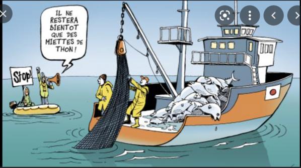 Nouvel accord de pêche entre l'Union européenne et la Mauritanie