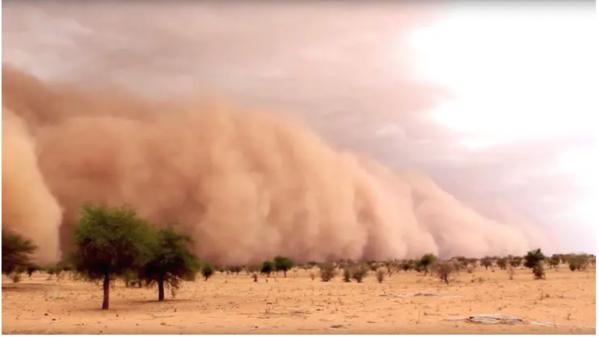 Mauritanie : plus de 20 habitations endommagées par la pluie et le vent dans le département de R'Kiz