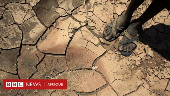 Retard des crues du fleuve Sénégal : inquiétude chez les paysans de la vallée