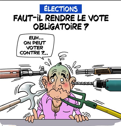 Mauritanie : le référendum sur la révision constitutionnelle à l'épreuve de l'abstention