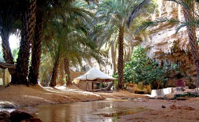 Terjit est à 4h de Nouakchott pour un passer un week-end agréable ( photos )