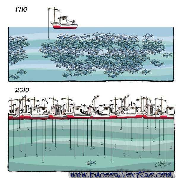 La Mauritanie et la Chine exprime leur volonté commune de développer leur coopération dans le domaine de la pêche