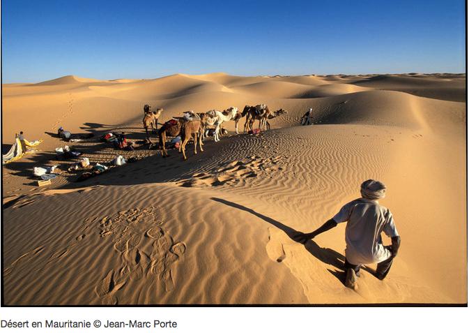 Retour en Mauritanie : les voyages programmés cet hiver