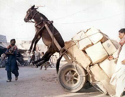 Mauritanie : au 1er janvier, l'ouguiya perdra un zéro