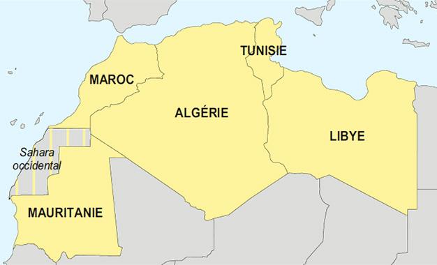Indice démocratique au Maghreb: La Mauritanie en queue de peloton