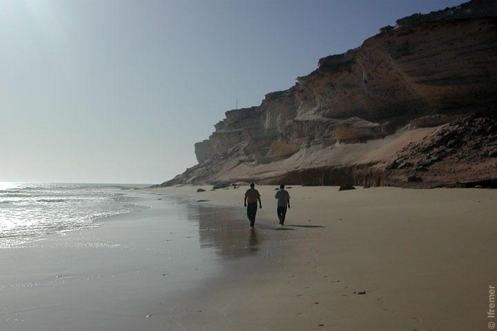 Cedeao – Mauritanie : 210 millions de dollars de la Banque Mondiale pour protéger le littoral