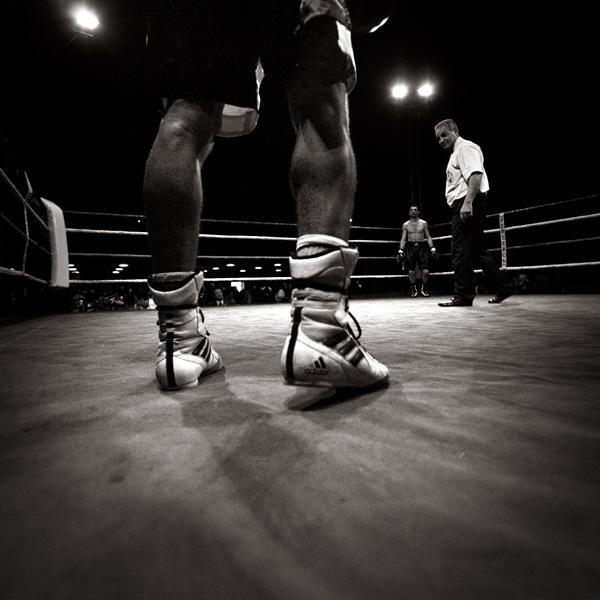 Nouakchott accueille le championnat du monde de boxe arabe