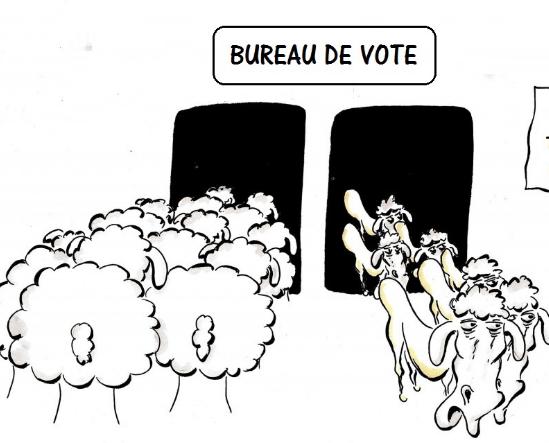 Adoption d'un RAVEL destiné à la révision du fichier électoral